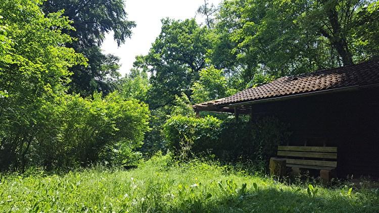 Waldgrundstück gartengrundstück freizeitgrundstück in landshut waldgrundstück